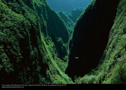 A może nawyspę Réunion?