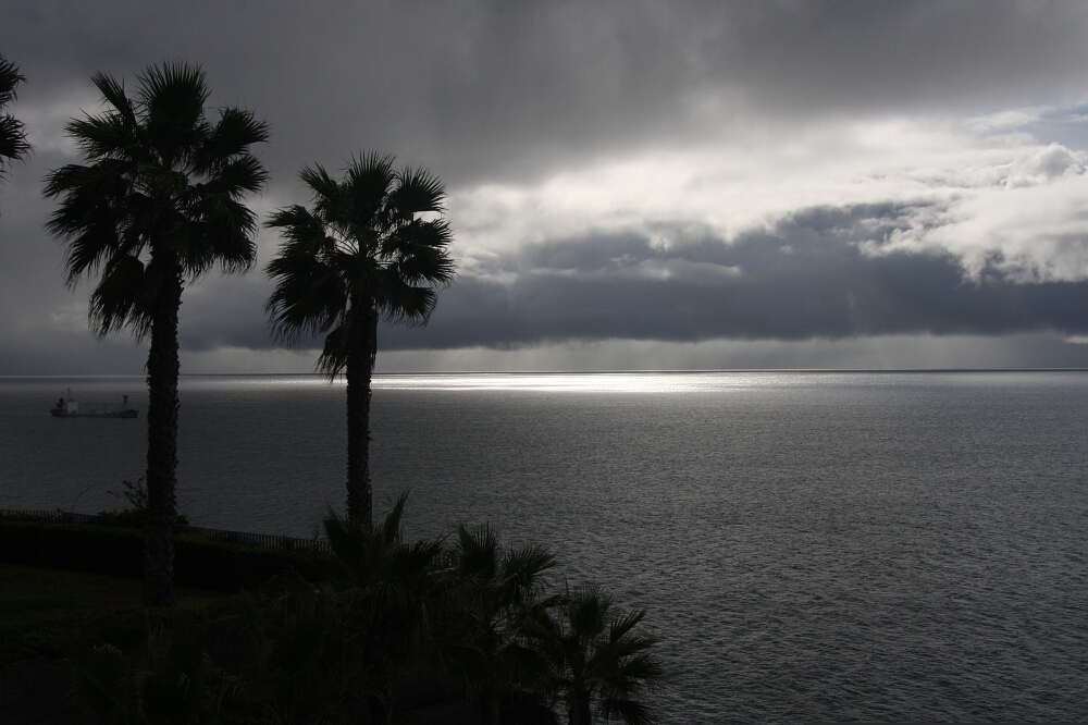 Madeira 38