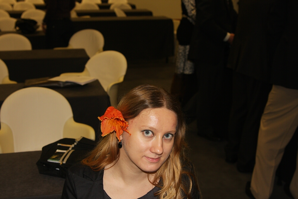Madeira flowers 08