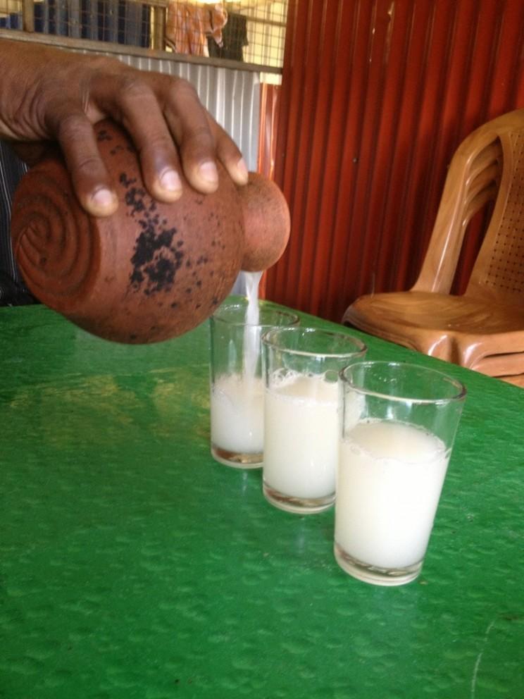 Toddy (sfermentowany sok złodyg kokosa), czyli niedestylowanego coconut fenny