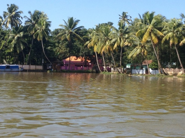 Rejs po Backwaters - Alleppey (Alappuzha), Kerala, Indie