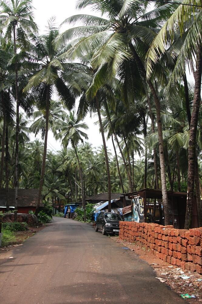 Goa 06