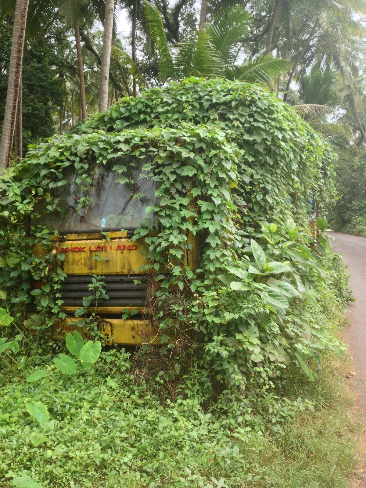 Old Goa 03