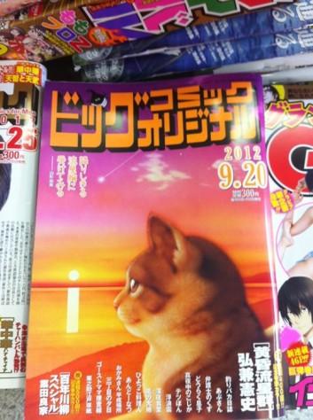 Cat Manga