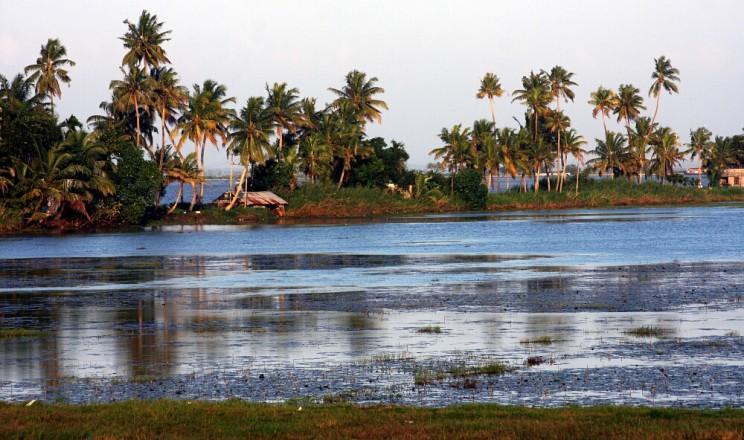Ciekawe miejsca wIndiach południowych: rozlewiska Backwaters, Kerala