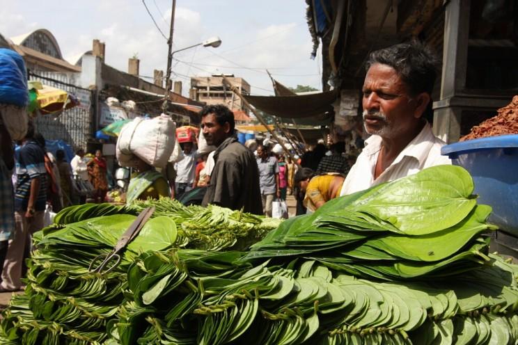 Ciekawe miejsca wIndiach południowych: Targ miejski wBangalurze (Bangalore), Karnataka