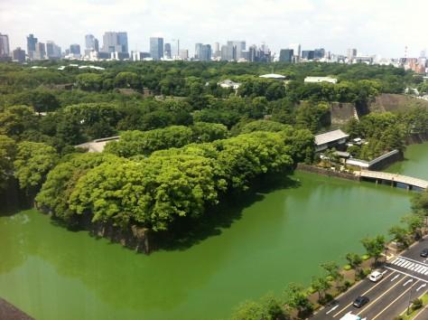 Tokyo Royal Gardens 02