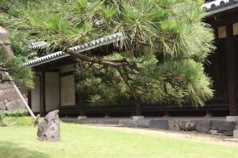 Tokyo Royal Gardens 08