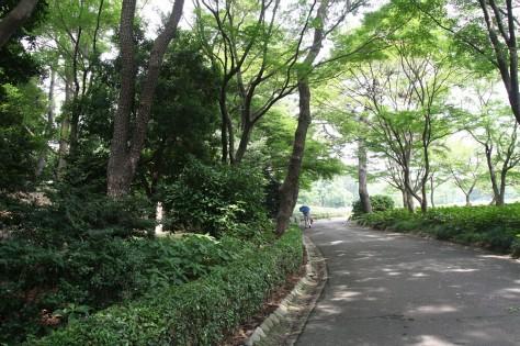 Tokyo Royal Gardens 12