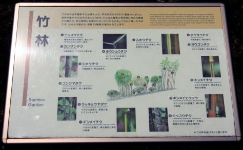 Tokyo Royal Gardens 19