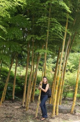 Tokyo Royal Gardens 20