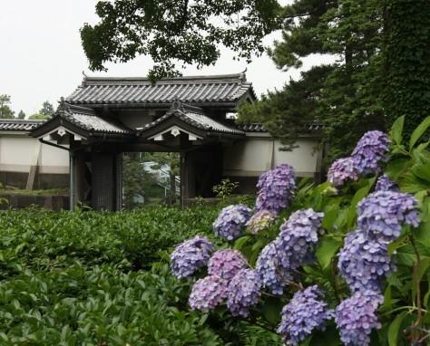 Tokyo Royal Gardens 25