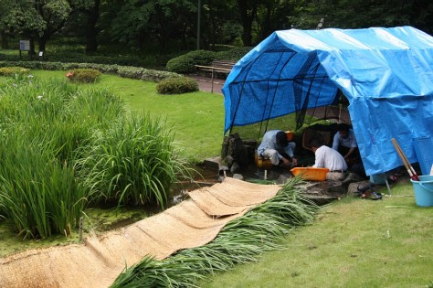 Tokyo Royal Gardens 37