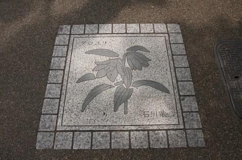 Tokyo Royal Gardens Pavement 01