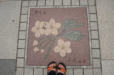 Tokyo Royal Gardens Pavement 03