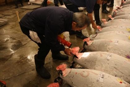 Tuńczyk za2 miliony dolarów - gdzie go zjeść? Recenzja restauracji Sushi Zanmai Tsukiji