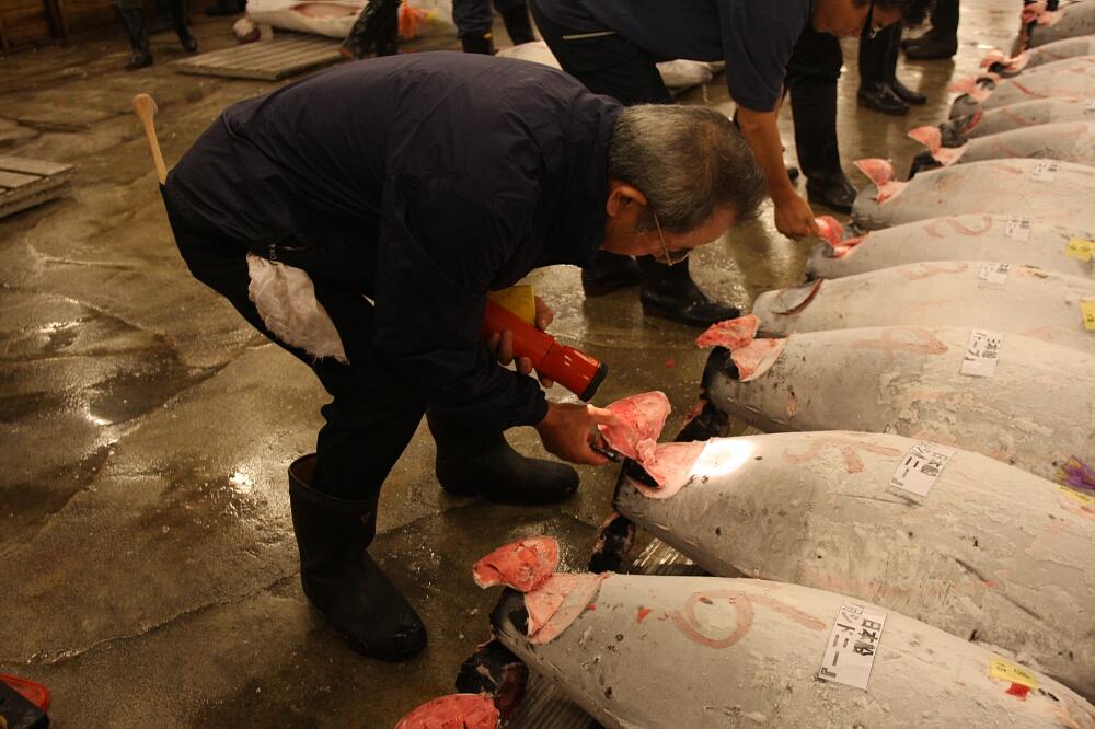 Tuńczyk za 2 miliony dolarów Japonia