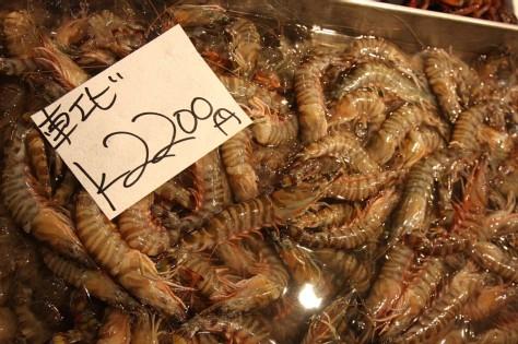 Tsukiji IMG_7340 A