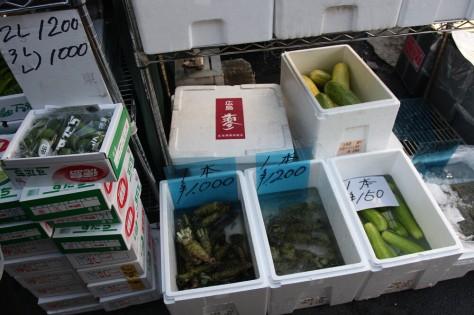 Tsukiji wasabi IMG_7293 A