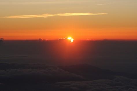 Fuji 40 IMG_6930 A