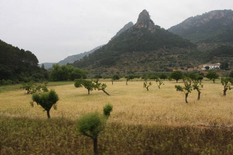 Po drodze oglądamy piękne widoki, wtym pasmo górskie Serra de Tramuntana (Majorka)