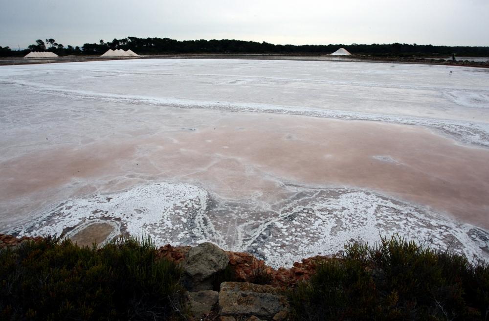 Majorka: słone jeziorka wColònia Sant Jordi