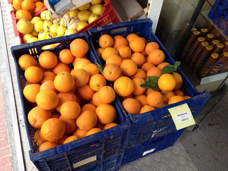 Słynne pomarańcze zSóller (Majorka)