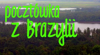 Pocztówka zBrazylii - pomóż polskim rysiom!