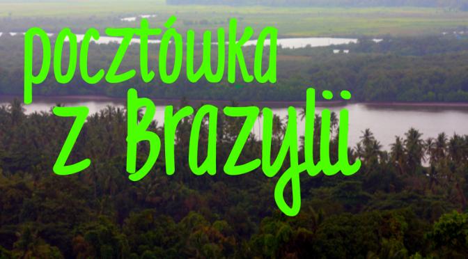 Pocztówka zBrazylii – pomóż polskim rysiom!