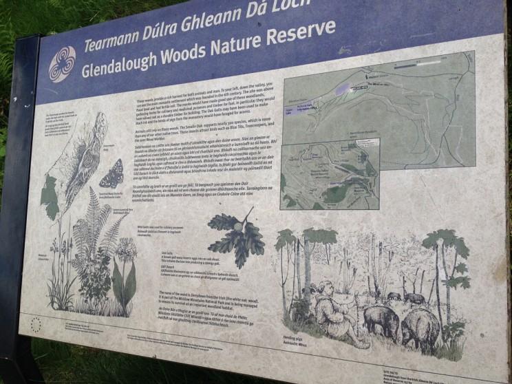 Glendalough Woods Nature Reserve