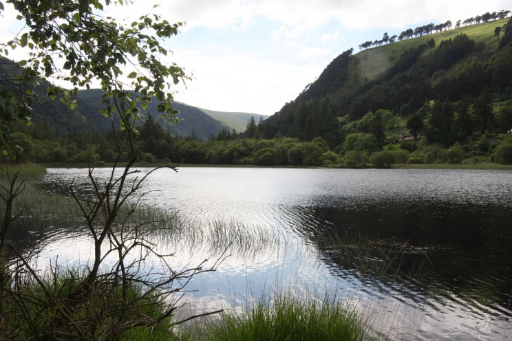 Jezioro Dolne - Lower Lake, Glendalough