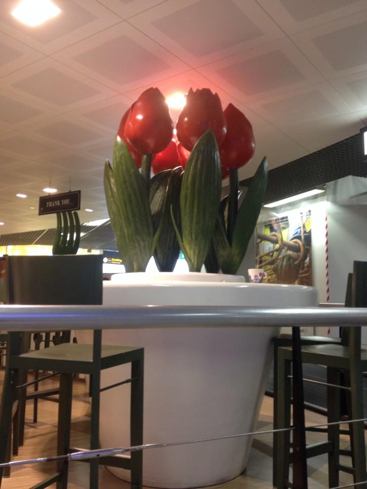 Lotnisko Schiphol Amsterdam, Holandia