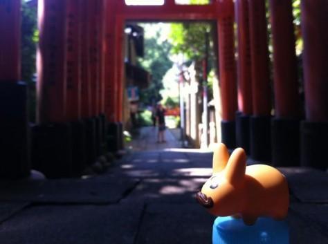 Labbit Fushimi Inari Taisha