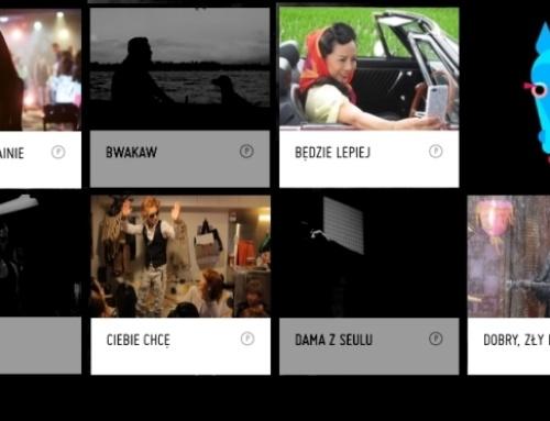 8. Festiwal Filmowy Pięć Smaków – podsumowanie