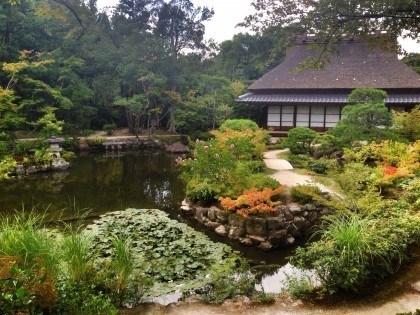 Japonia - jak zorganizować wyjazd #3: co spakować doJaponii