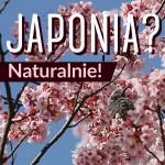 Japonia_Naturalnie_Mini