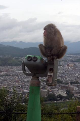 Arashiyama Monkīpāku Iwatayama