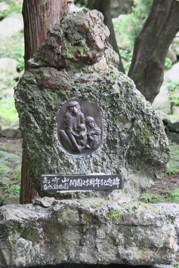 Małpi Park Takasakiyama, Beppu, prefektura Oita, Japonia