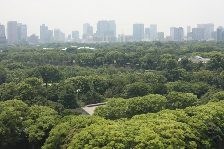 Ogrody Cesarskie wTokio (Tokyo Imperial Gardens), prefektura stołeczna Tokio, Japonia