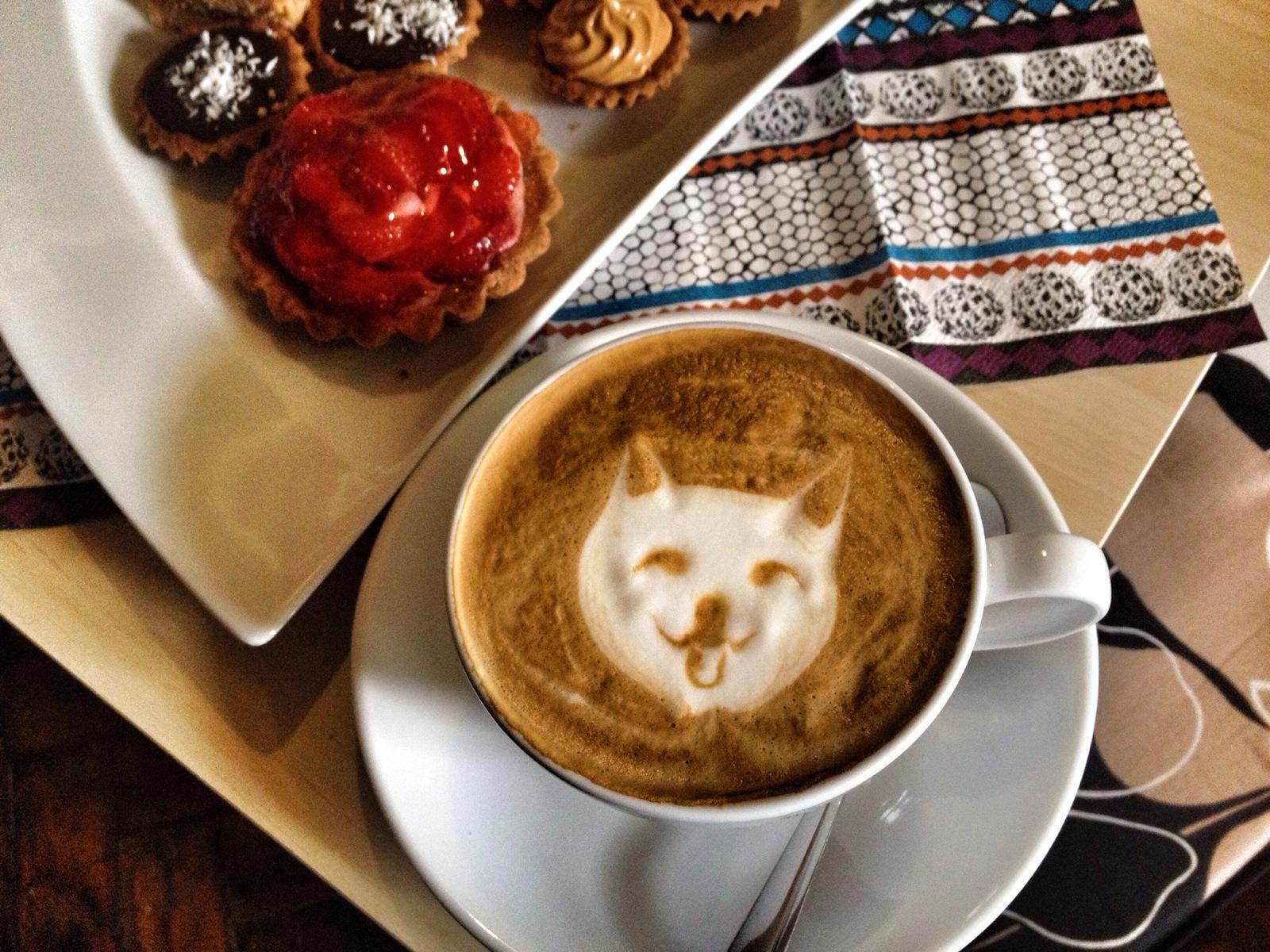 Witaj wKociarni, krakowskiej neko cafe