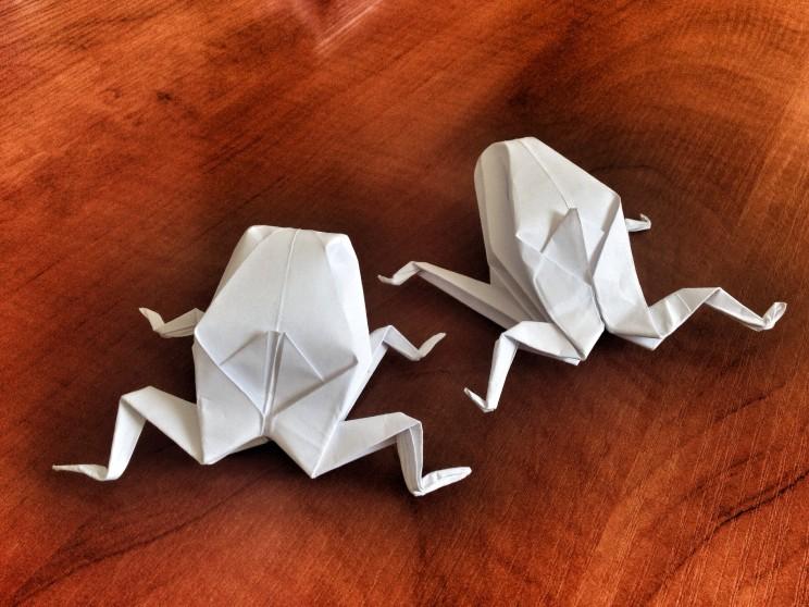 Origami - żaba