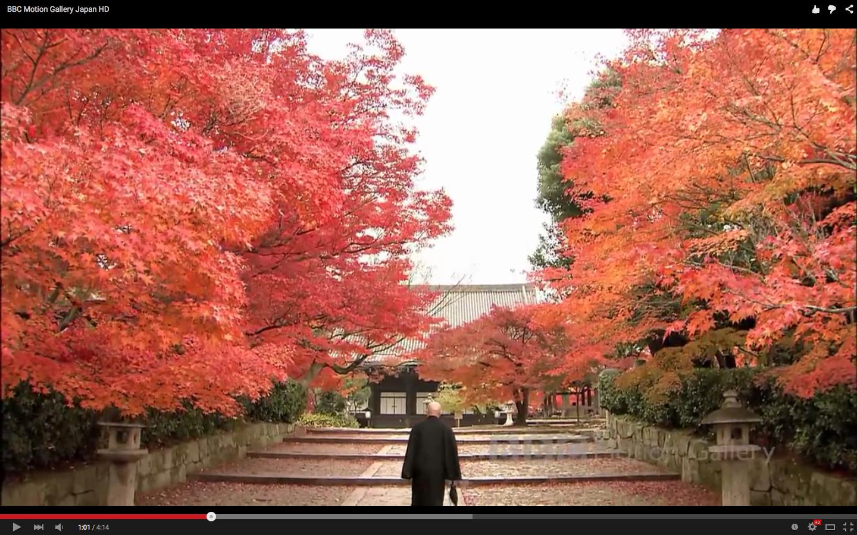 Inspirujące filmiki wideo z Japonii