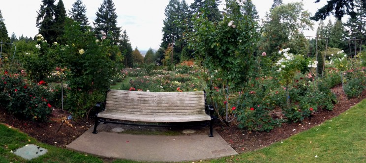 International Rose Test Garden Portland