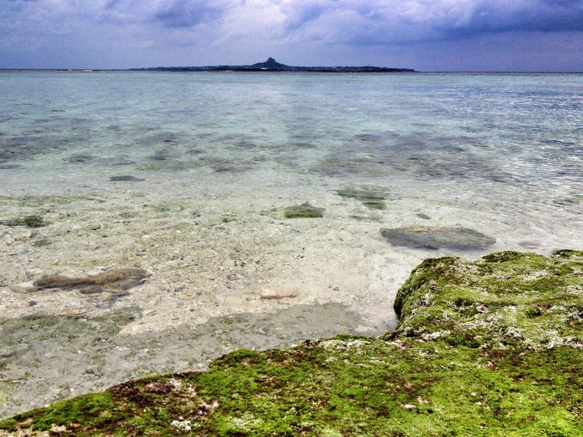 Gdzie warto jechać zimą naurlop: Turtle Beach (Żółwia Plaża), Churaumi, Okinawa, Japonia