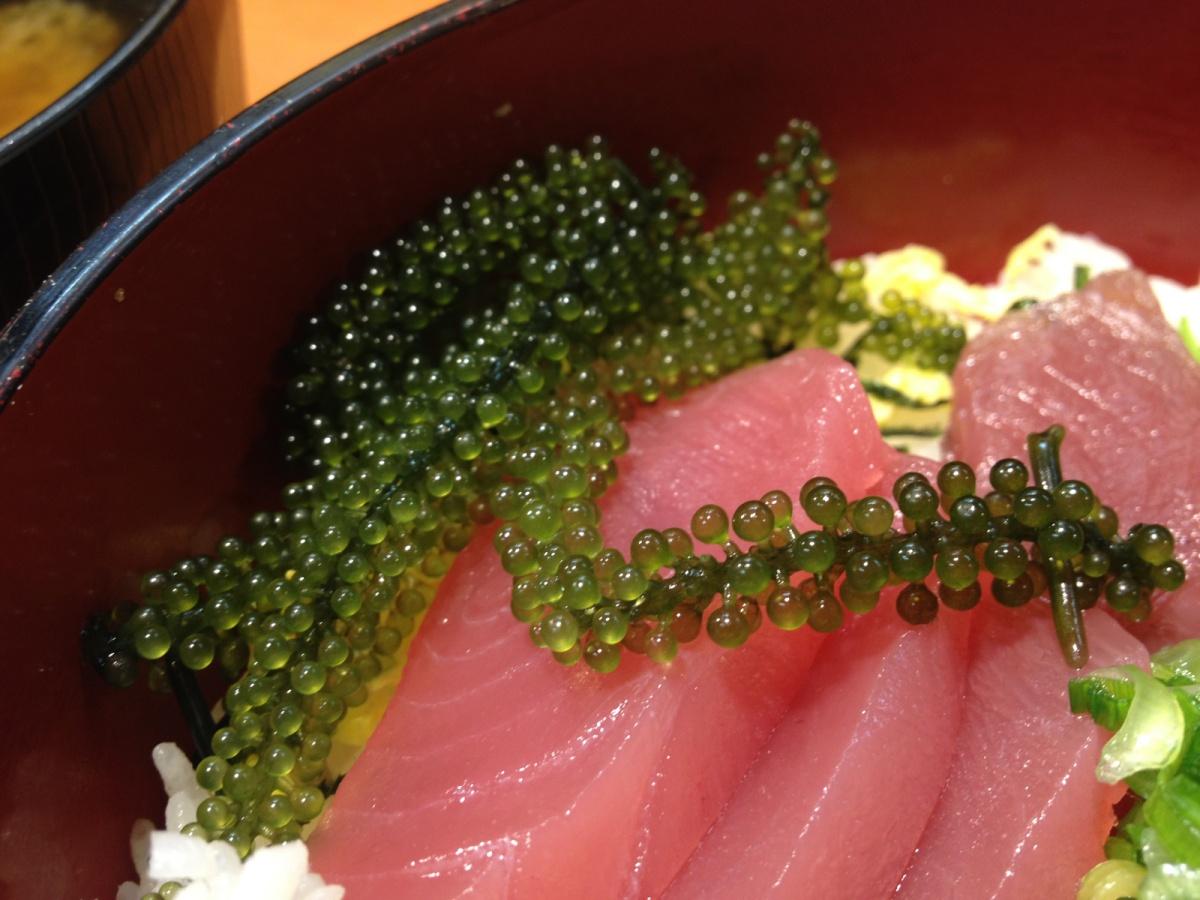 Umibudo - Sea grapes seaweed - Tomari Lyumachi Fish Market Okinawa