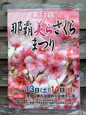 Naha Chura Sakura Matsuri (那覇美らさくらまつり) 2016