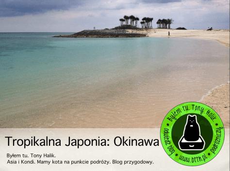 pokaz-tropikalna-japonia-okinawa