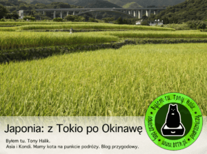 Podróże po Japonii: od Tokio po Okinawę (prezentacja video)