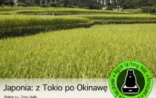 podroze-po-japonii-tokio-okinawa