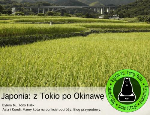 Podróże poJaponii: odTokio poOkinawę (prezentacja video)